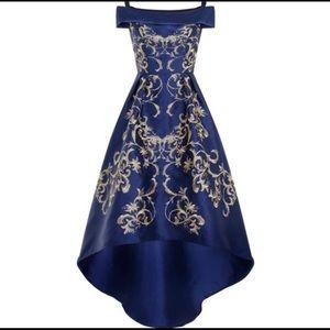Beautiful Cinderella Chi Chi London dress